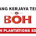 Peluang Kerjaya Terbaru Di Boh Plantations Sdn Bhd