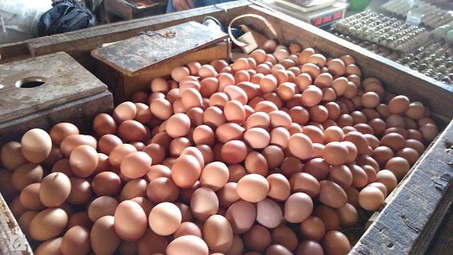 Mentan Targetkan Harga Telur Turun Jadi Rp 22 Ribu per Kg