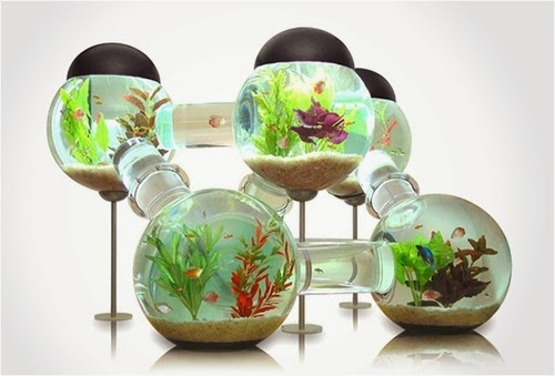 04-Labyrinth-Maze-Aquarium-Fish-Tank-Opulentitems-www-designstack-co