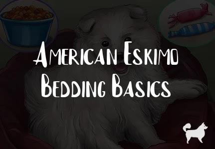 American Eskimo Bedding Basics