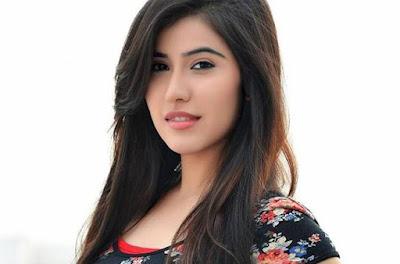 Sheena Bajaj Wiki