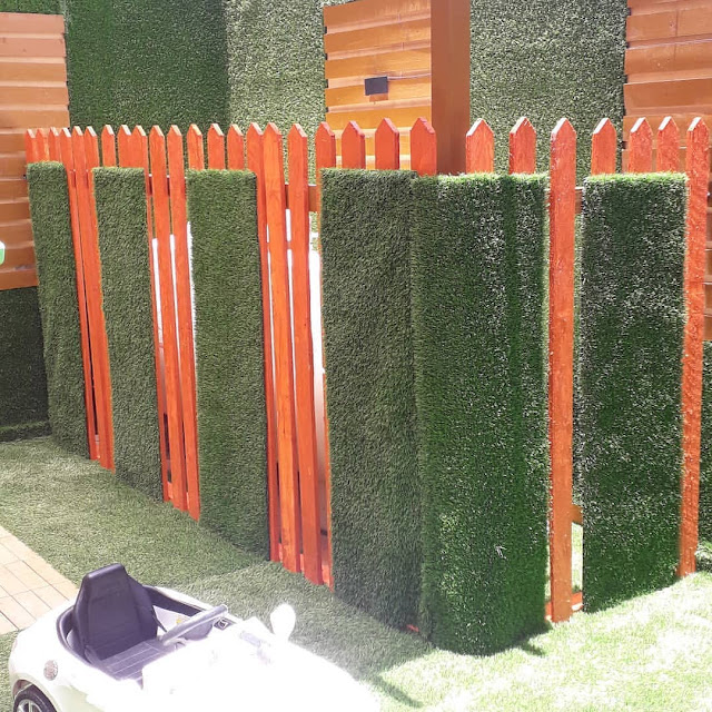 تركيب العشب الجداري في أبها