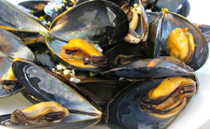 Mussels in Lemon Garlic-Butter Sauce #dinnerrecipe #food #amazingrecipe #easyrecipe
