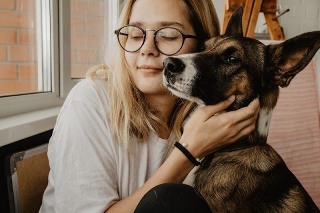 Tenencia de mascotas en la comunidad de vecinos