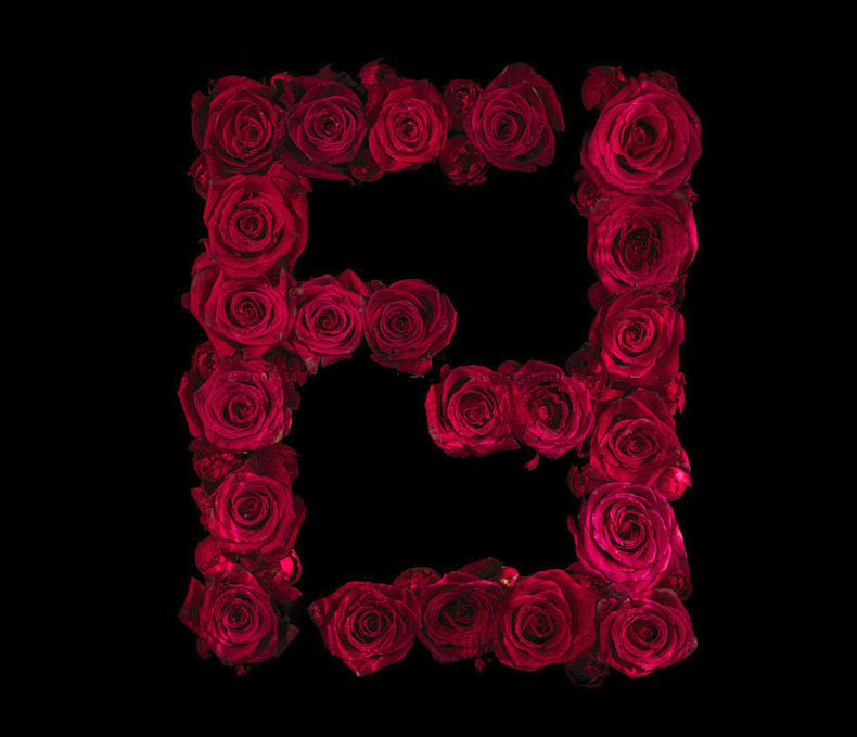 If It S Hip It S Here Archives Drowning In Brands Underwater Rosae Still Life Logo Series