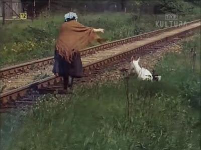 Jak się pozbyć czarnego kota (1984)