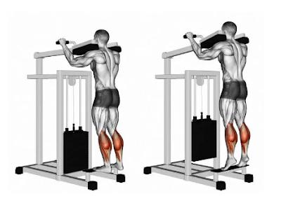 Calf Exercises - Machine standing calf raise