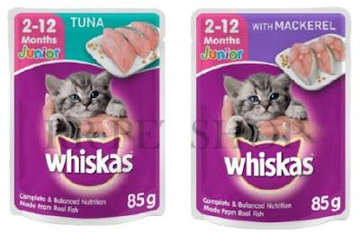 10 Rekomendasi Makanan Kucing yang Bagus Dengan Gizi yang Baik
