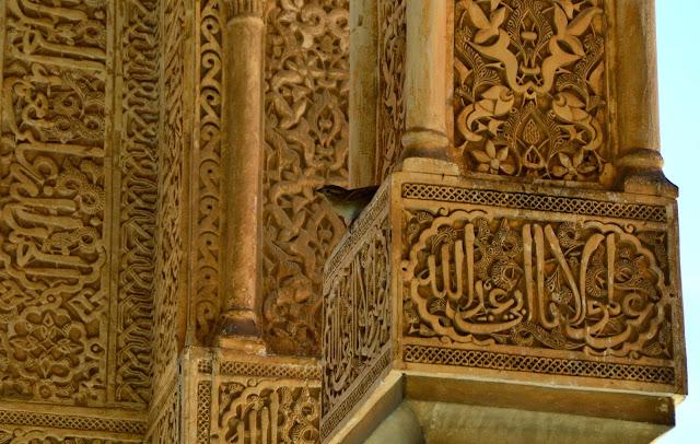 Alhambra arabskie napisy na kolumnach i wróbel