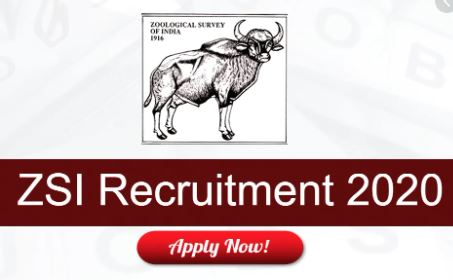 zoological survey of India recruitment 2020 notification