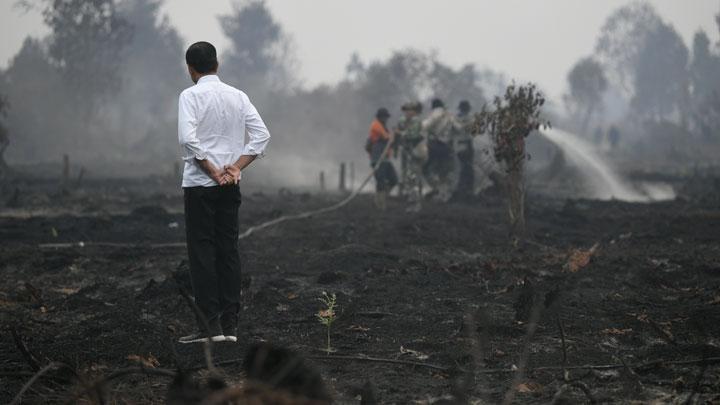 Mengakhiri Kebakaran Bukan Sekadar Selfie, Maaf Pak Jokowi, Rakyat Tidak TerkesanMengakhiri Kebakaran Bukan Sekadar Selfie, Maaf Pak Jokowi, Rakyat Tidak Terkesan