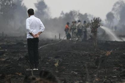 Mengakhiri Kebakaran Bukan Sekadar Selfie, Maaf Pak Jokowi, Rakyat Tidak Terkesan