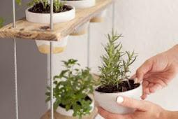 Idées de jardin d'herbes d'intérieur