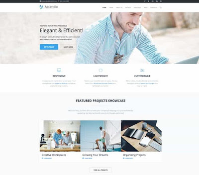 Ascendo wordpress theme