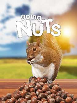 Going Nuts: Tales from the Squirrel World (2019)