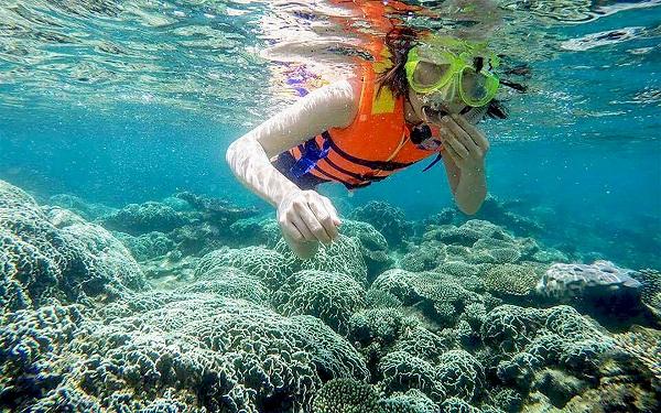 hệ thống rạn san hô đa dạng và phong phú tại Phú Quốc