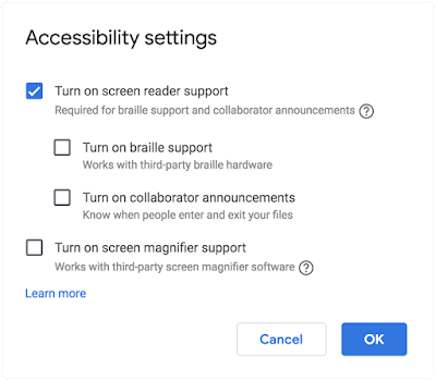 The accessibility settings dialog showing screen reader, braille, and screen magnifier support options.