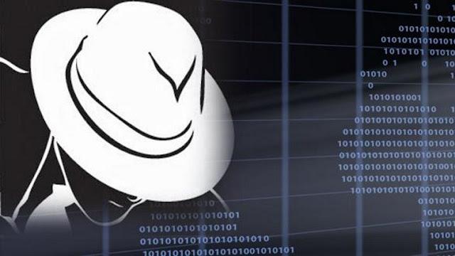 Whitehat Hacker কি?