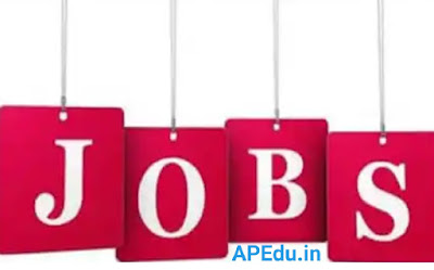 WDCW Jobs in AP: Notification for 183 Anganwadi Posts