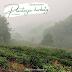 Zapomniana plantacja herbaty w Chinach