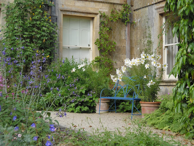 angielska rabata, metalowa ławka ogrodowa