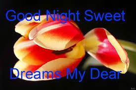 bast good night