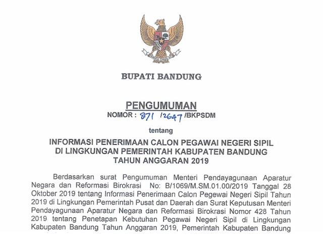 Inilah Alokasi Formasi CPNS Kabupaten Bandung 2019
