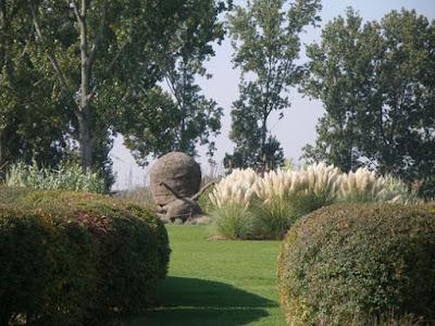 Пампасная трава в саду