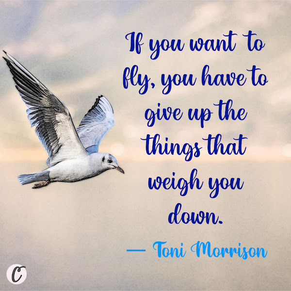 If you want to fly, you have to give up the things that weigh you down. — Toni Morrison, Song of Solomon