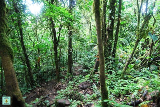 Camino al Cerro Chato, Costa Rica