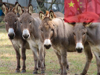 China is the first place in the population of donkeys