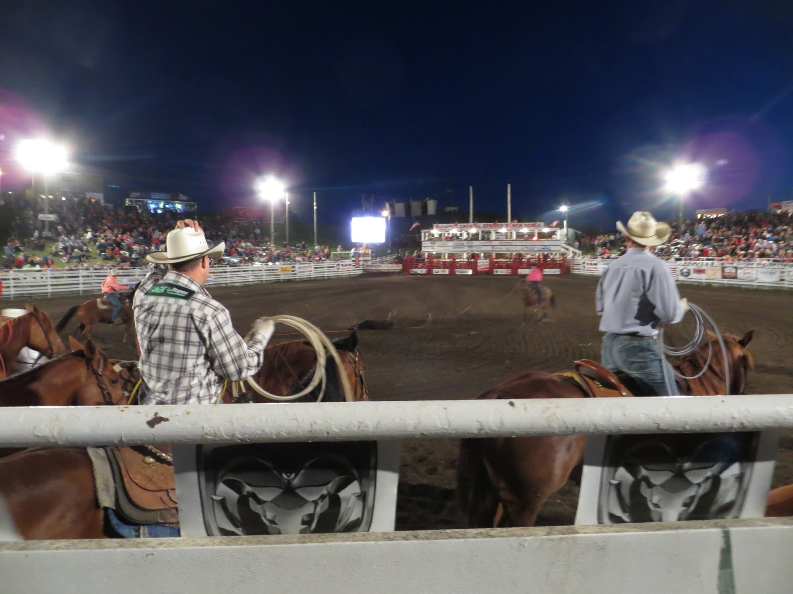 Better Than I Deserve Crystal Springs Rodeo