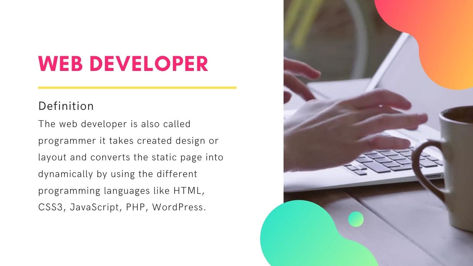 What is Web Developer