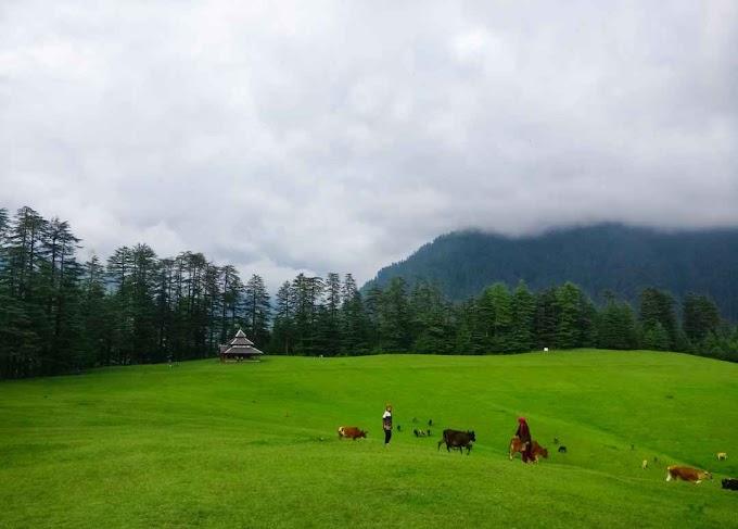 Shangarh Sainj Valley - Himachal Pradesh |  Complete Travel Guide