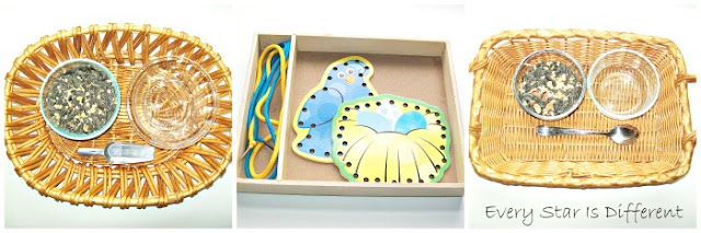 Montessori Bird Themed Practical Life Activities
