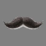 mustache in spanish