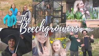 Beechgrowers