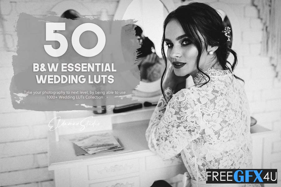 Black and White Essential 50  Wedding LUTs Pack