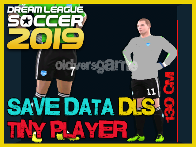 download-save-data-dls-tiny-player