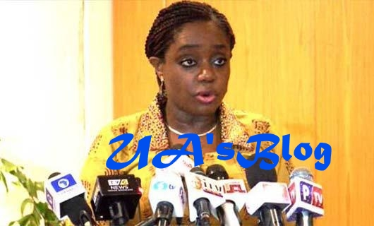 Nigeria To Lose $2 billion Investments In Power Project As Adeosun Cancels Contracts