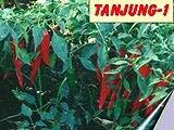 Tanjung-1