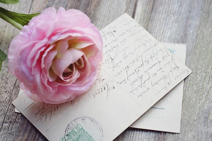Flor rosa com carta