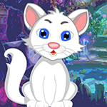 Games4King White Cat Rescue
