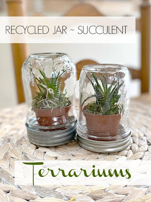 How to make a succulent terrarium using recycled jars.