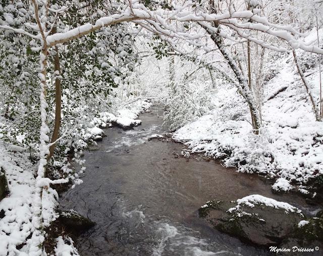 Ruisseau du Sant bordé de neige Sant creek with snow