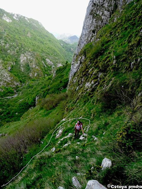 Un pequeño bosque de avellanos en el Valle de Ozanía complica el ascenso.
