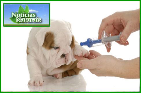 [Imagem: Vacinas-e-Pesticidas-Tambem-Causam-Doenc...imacao.jpg]
