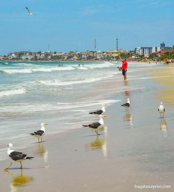 Praia dos Ingleses, Florianópolis, Santa Catarina
