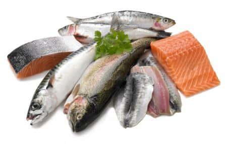 Tips Berguna Memilih Ikan Segar Di Pasar