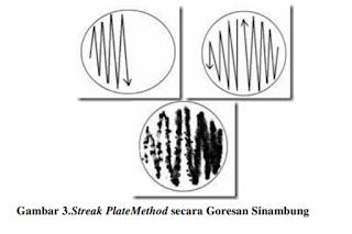 streak plate methode teknik sebar sinambung pada media agar